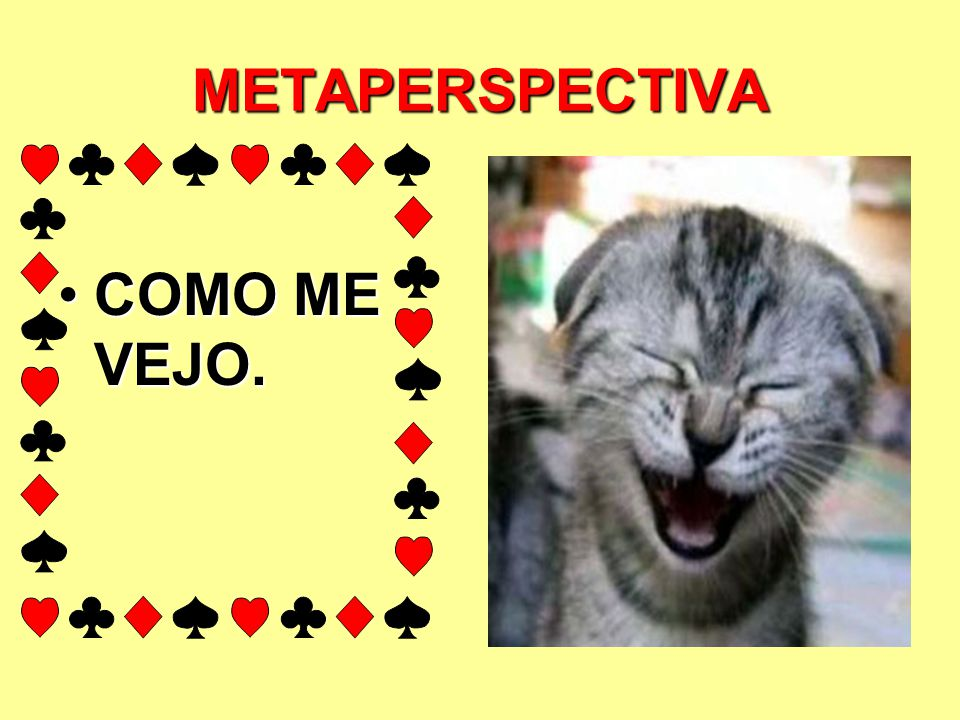 METAPERSPECTIVA COMO ME VEJO.