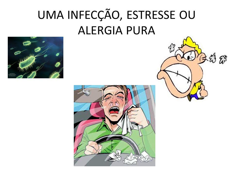 UMA INFECÇÃO, ESTRESSE OU ALERGIA PURA