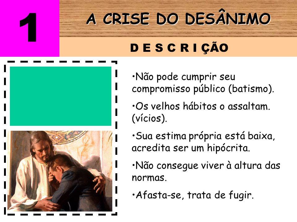 1 A CRISE DO DESÂNIMO D E S C R I ÇÃO