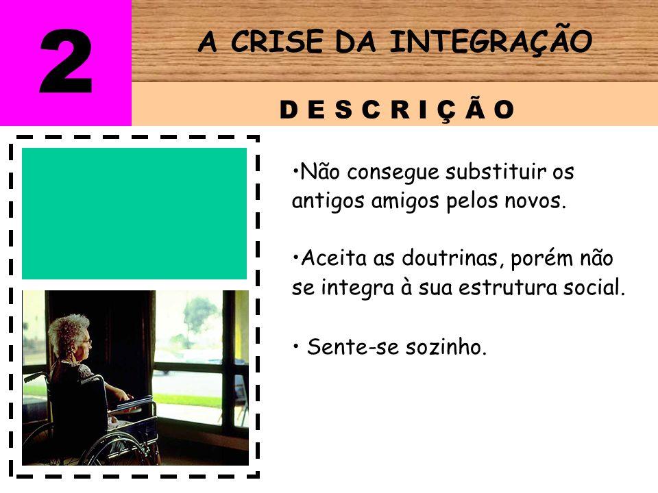 2 A CRISE DA INTEGRAÇÃO D E S C R I Ç Ã O