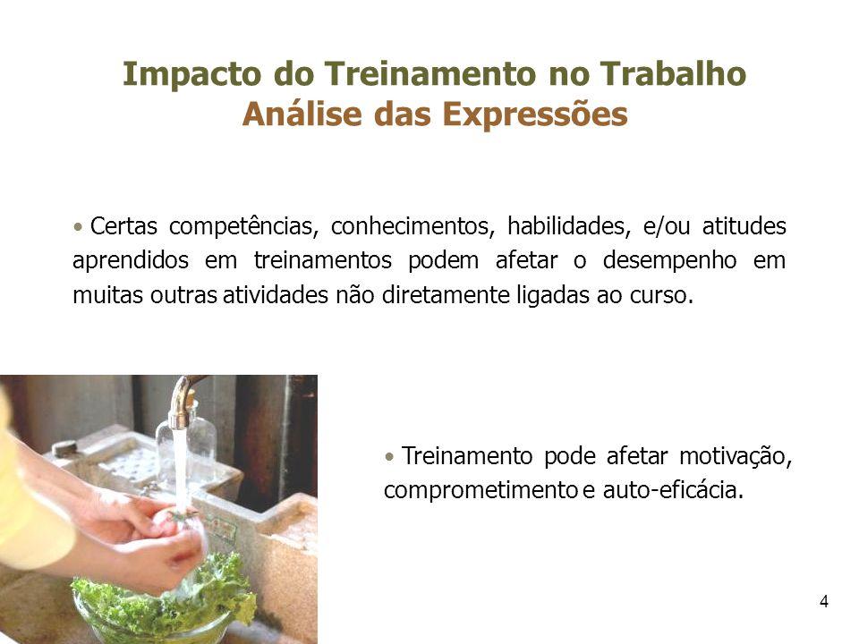 Impacto do Treinamento no Trabalho Análise das Expressões