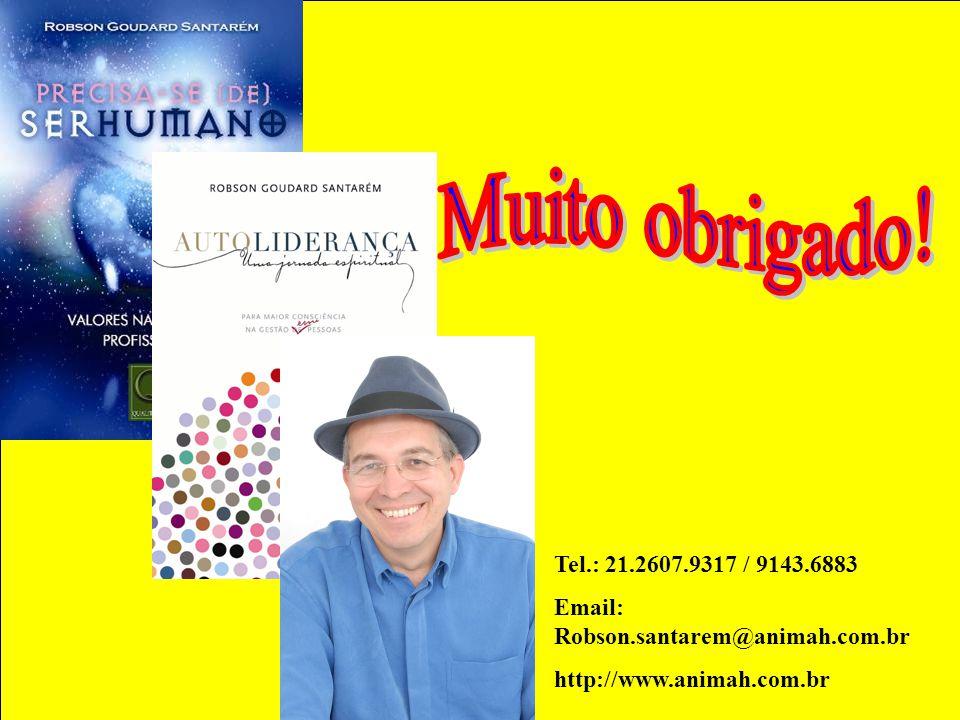 Muito obrigado. Tel.: 21.2607.9317 / 9143.6883. Email: Robson.santarem@animah.com.br.