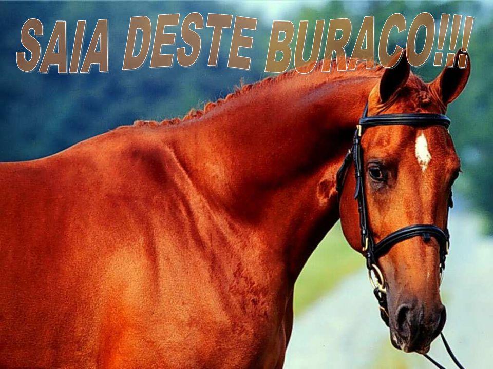 SAIA DESTE BURACO!!!