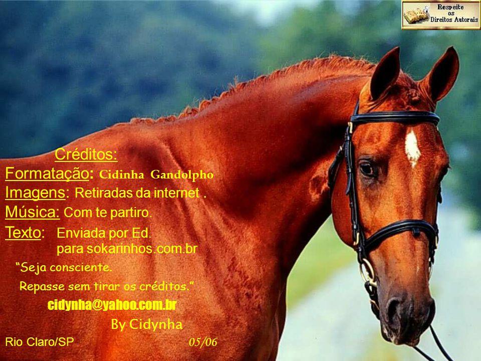 Formatação: Cidinha Gandolpho Imagens: Retiradas da internet .