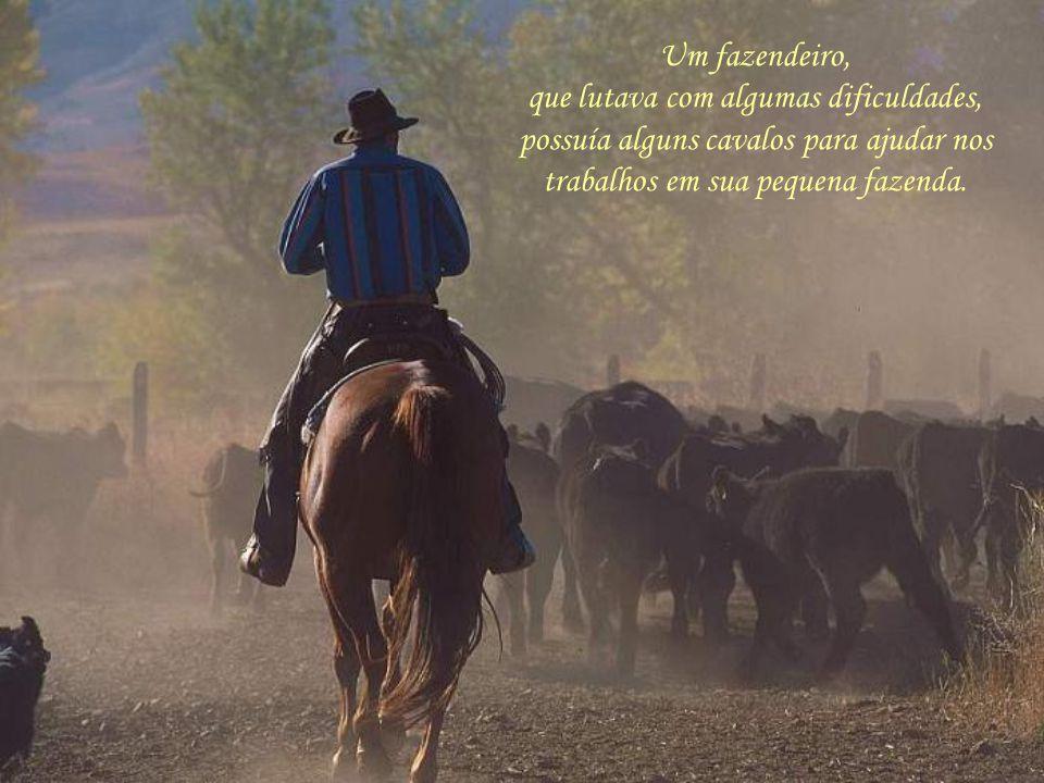 Um fazendeiro, que lutava com algumas dificuldades, possuía alguns cavalos para ajudar nos trabalhos em sua pequena fazenda.