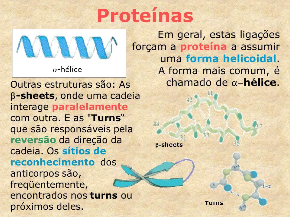 Proteínas Em geral, estas ligações forçam a proteína a assumir uma forma helicoidal. A forma mais comum, é chamado de a-hélice.