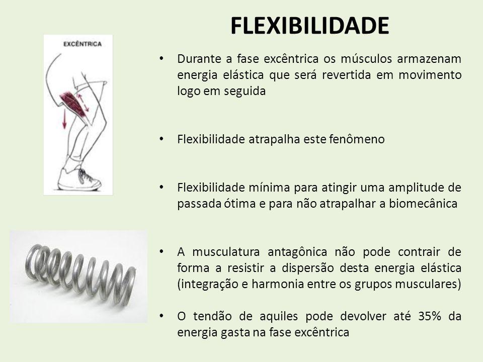 FLEXIBILIDADE Durante a fase excêntrica os músculos armazenam energia elástica que será revertida em movimento logo em seguida.