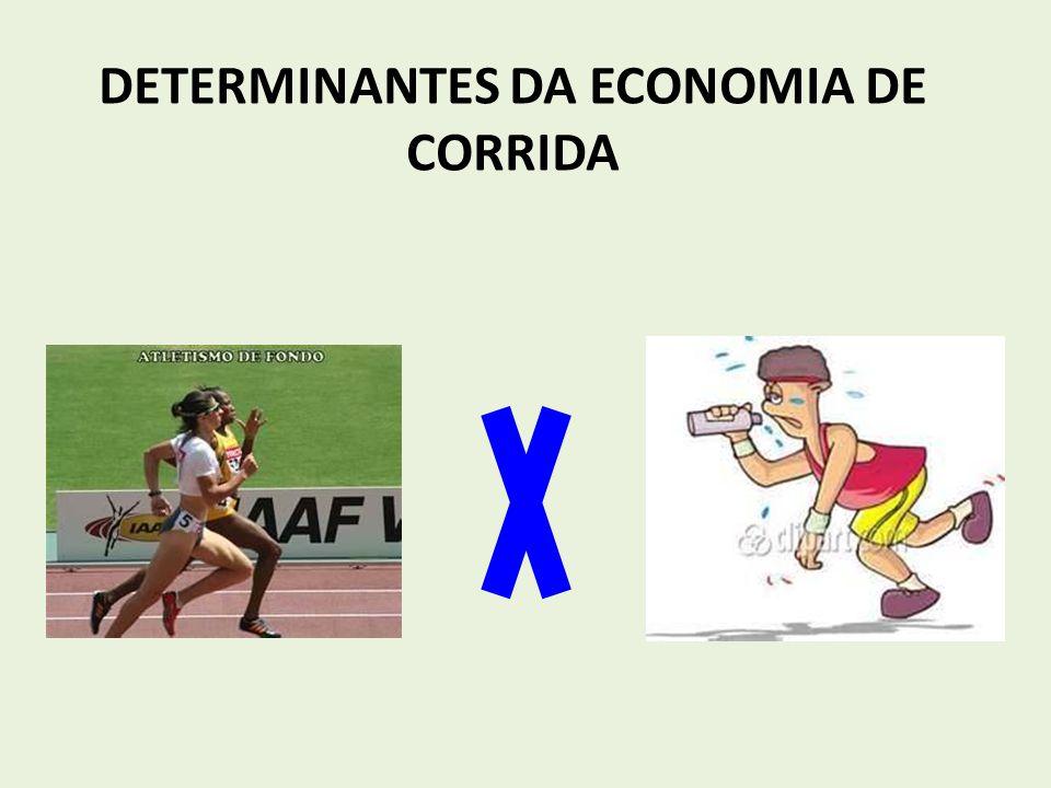 DETERMINANTES DA ECONOMIA DE CORRIDA