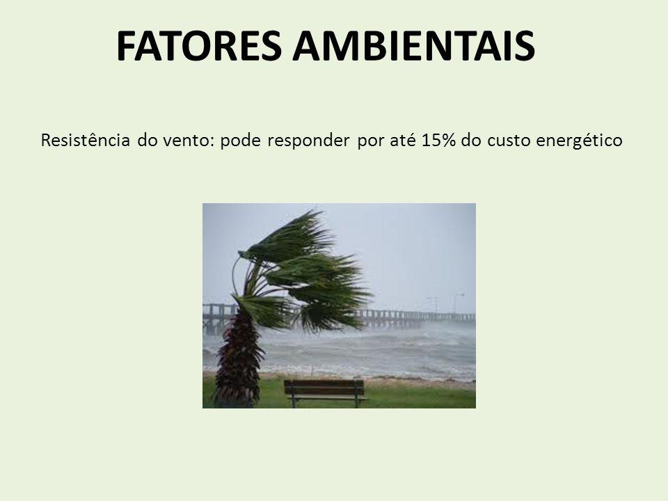 Resistência do vento: pode responder por até 15% do custo energético