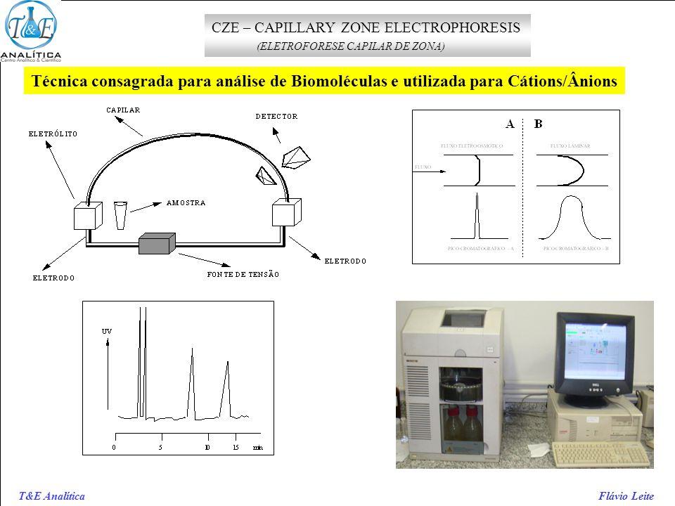 CZE – CAPILLARY ZONE ELECTROPHORESIS