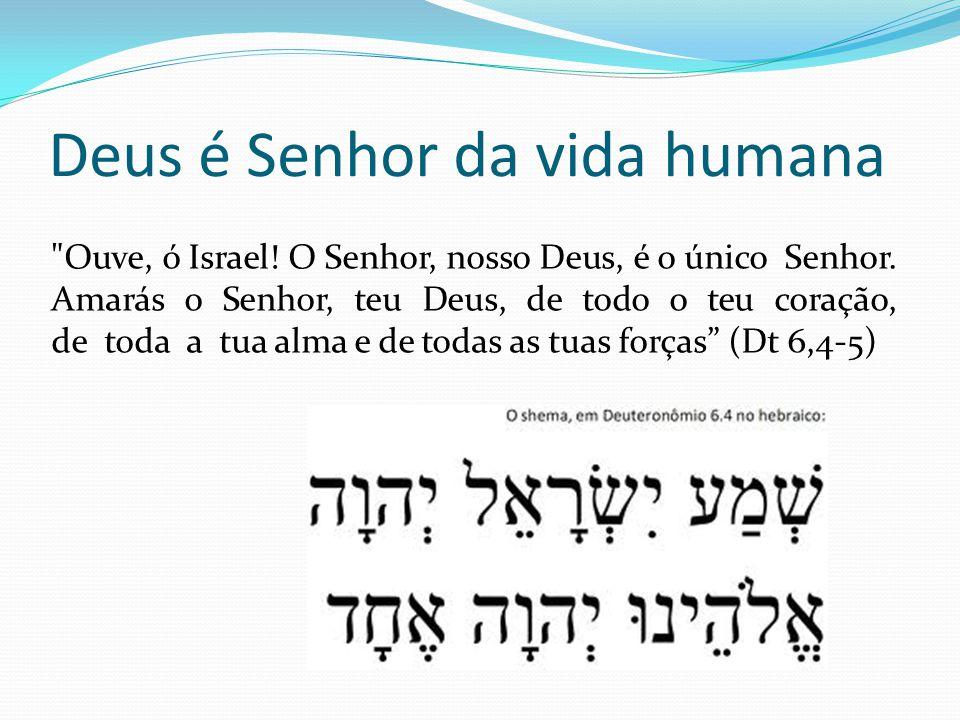 Deus é Senhor da vida humana