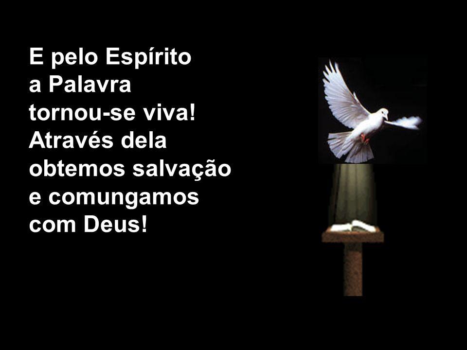 E pelo Espírito a Palavra tornou-se viva! Através dela obtemos salvação e comungamos com Deus!