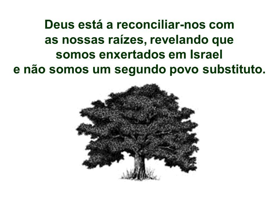 Deus está a reconciliar-nos com as nossas raízes, revelando que