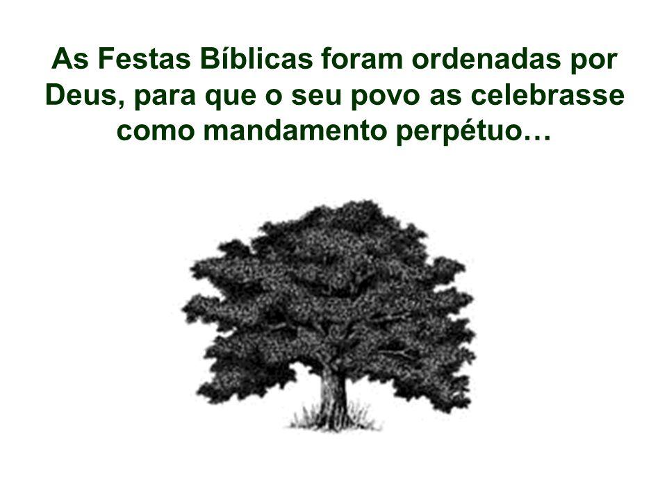 As Festas Bíblicas foram ordenadas por
