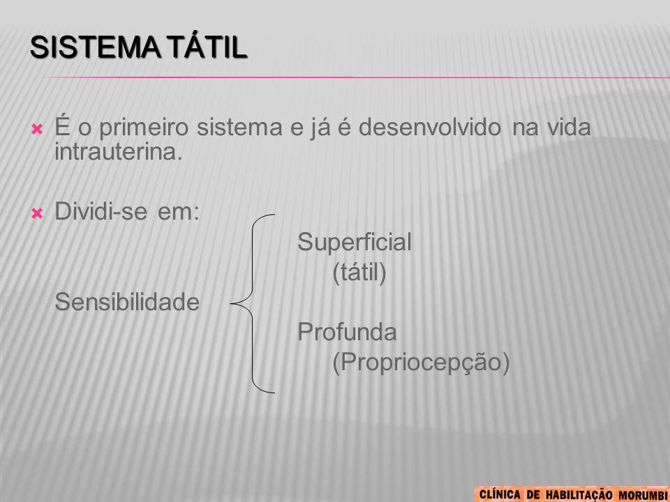 Sistema Tátil É o primeiro sistema e já é desenvolvido na vida intrauterina. Dividi-se em: Superficial.