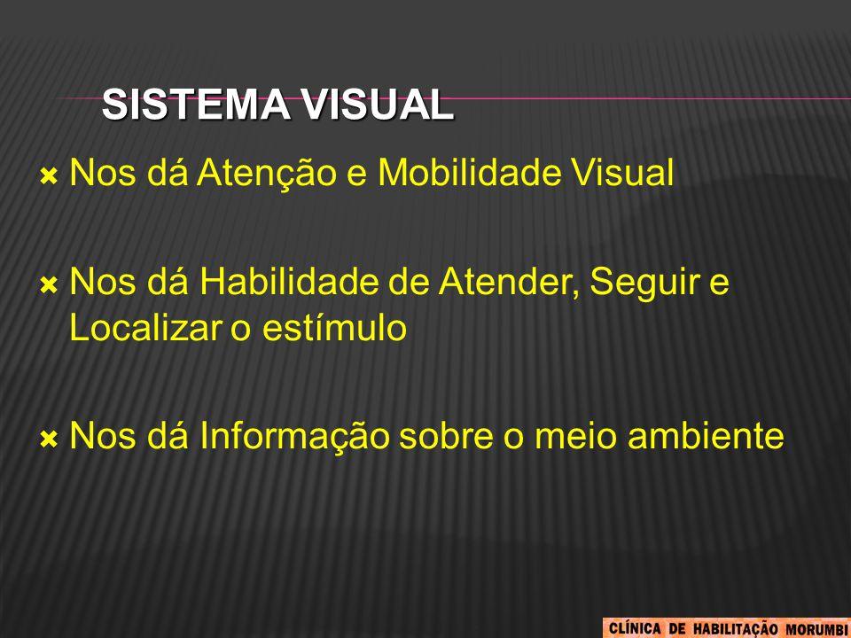 Sistema Visual Nos dá Atenção e Mobilidade Visual