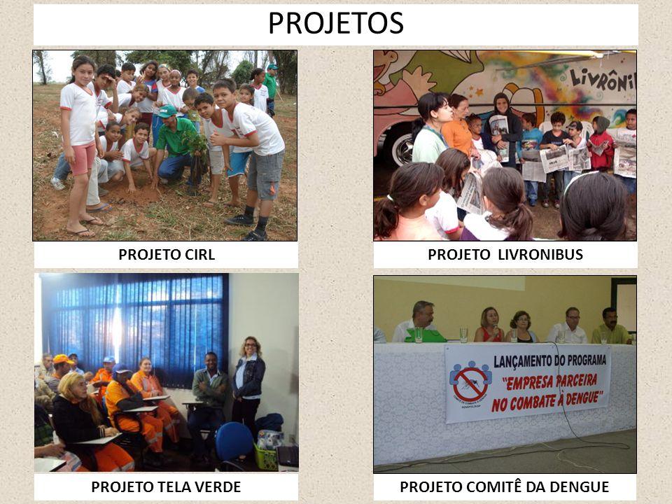 PROJETO COMITÊ DA DENGUE
