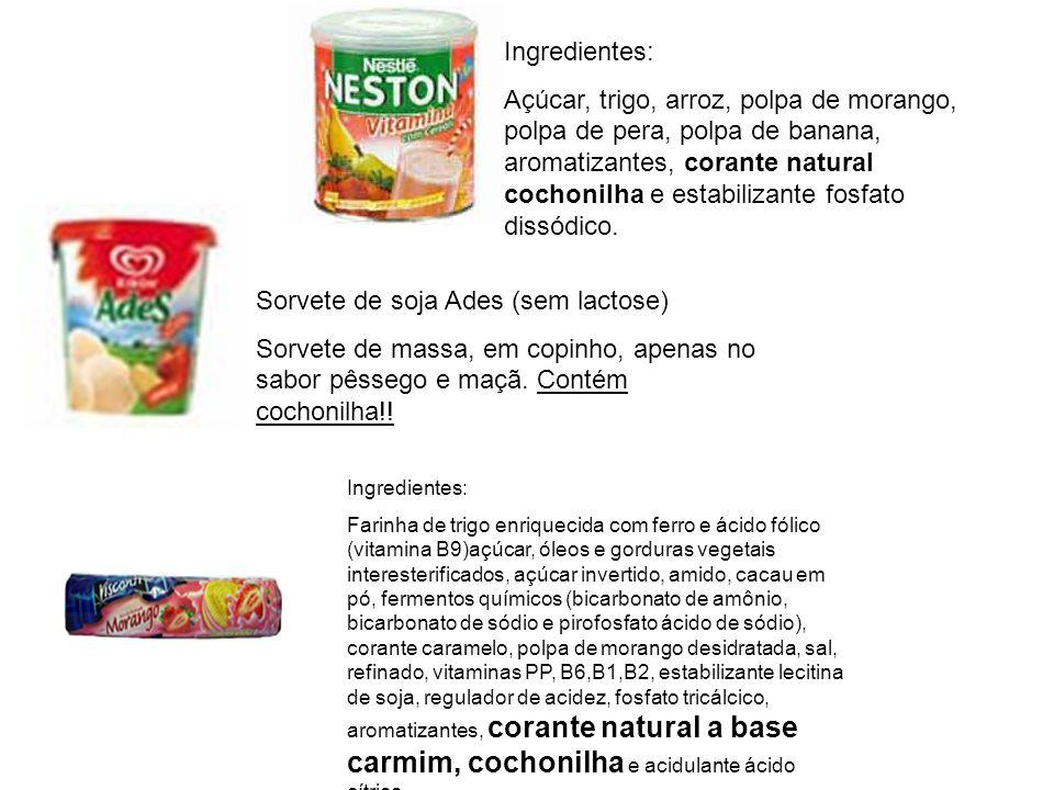Sorvete de soja Ades (sem lactose)