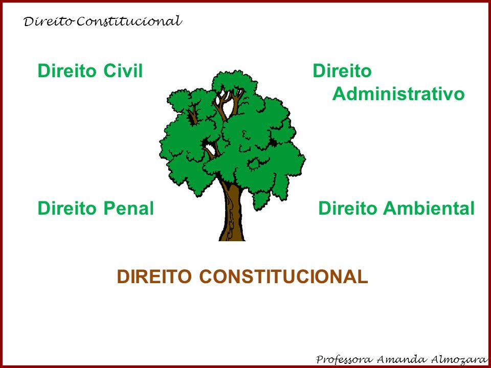 Direito Penal Direito Ambiental