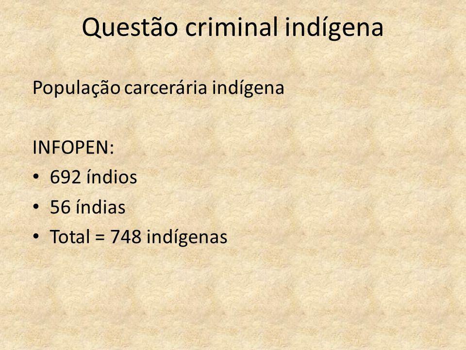 Questão criminal indígena