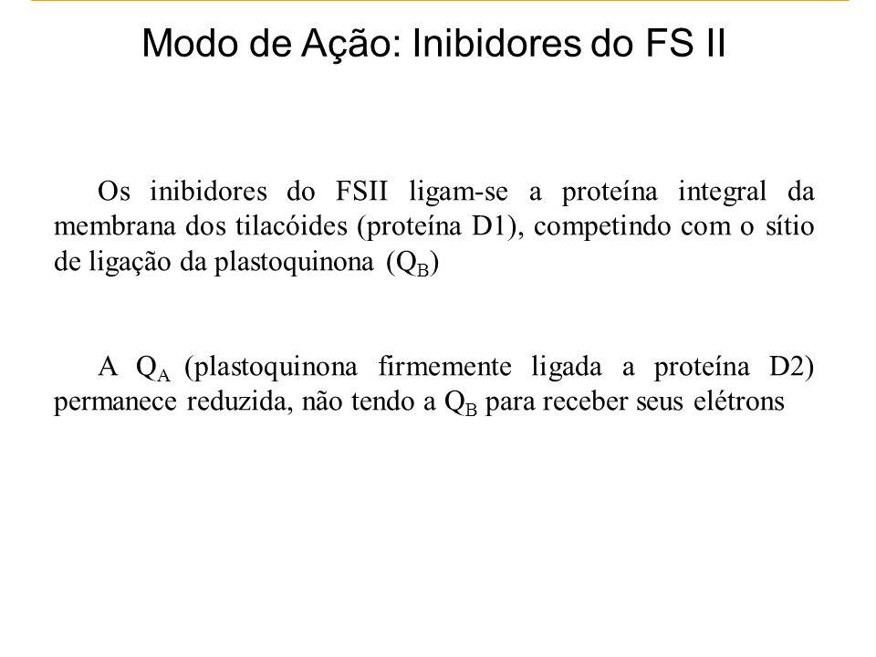 Modo de Ação: Inibidores do FS II