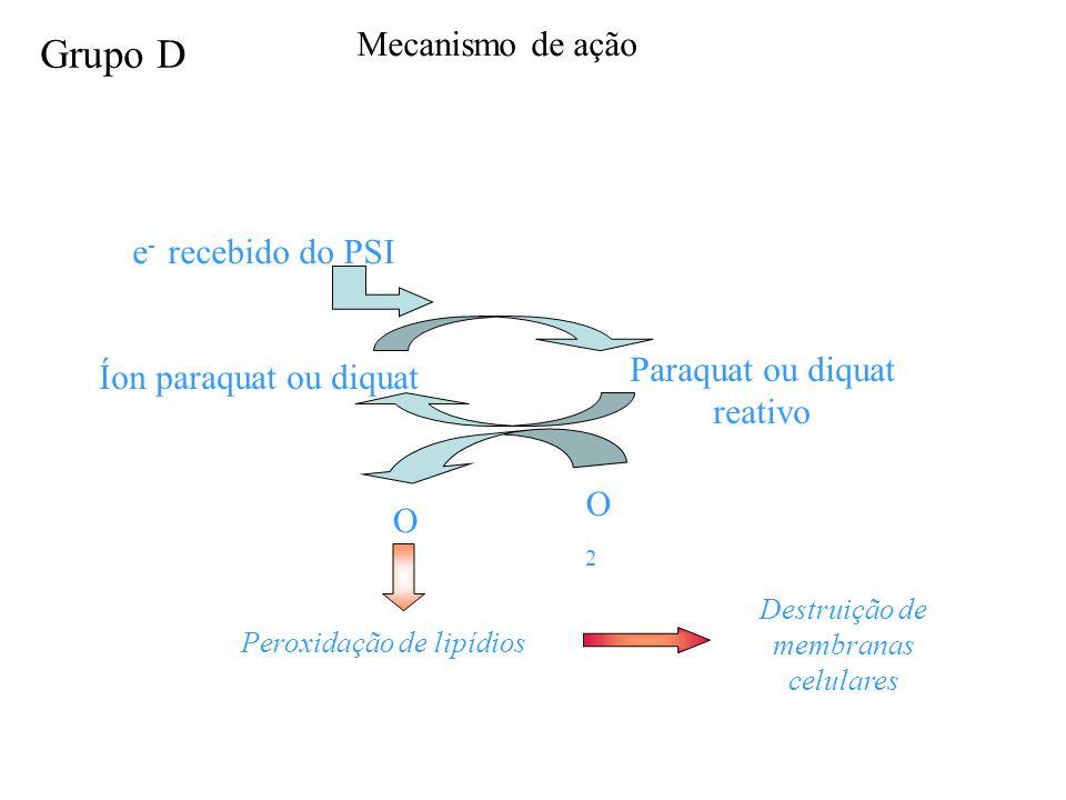 Grupo D Mecanismo de ação e- recebido do PSI