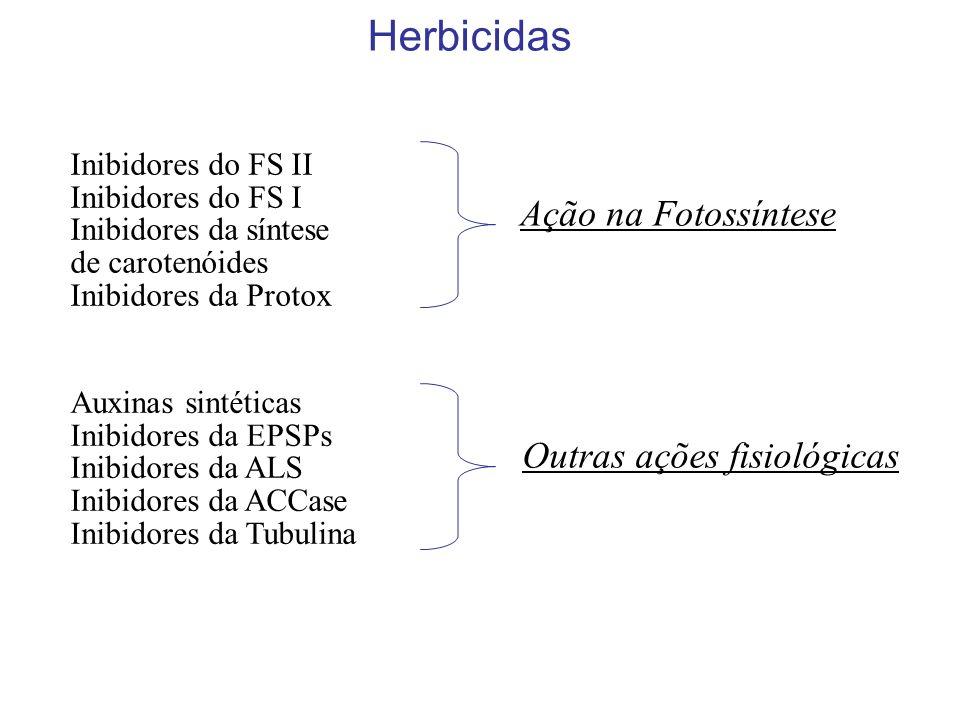 Herbicidas Ação na Fotossíntese Outras ações fisiológicas