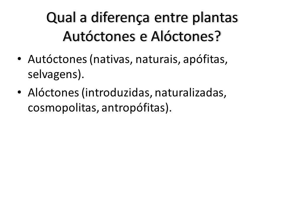 Qual a diferença entre plantas Autóctones e Alóctones