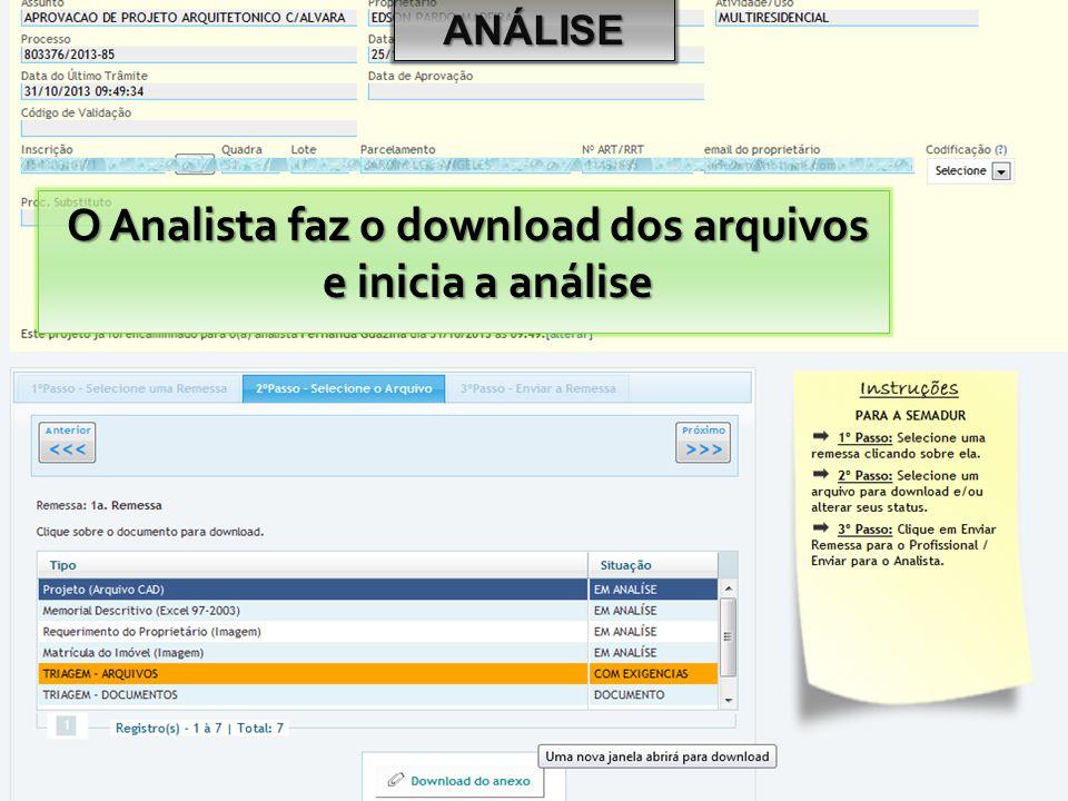 O Analista faz o download dos arquivos e inicia a análise
