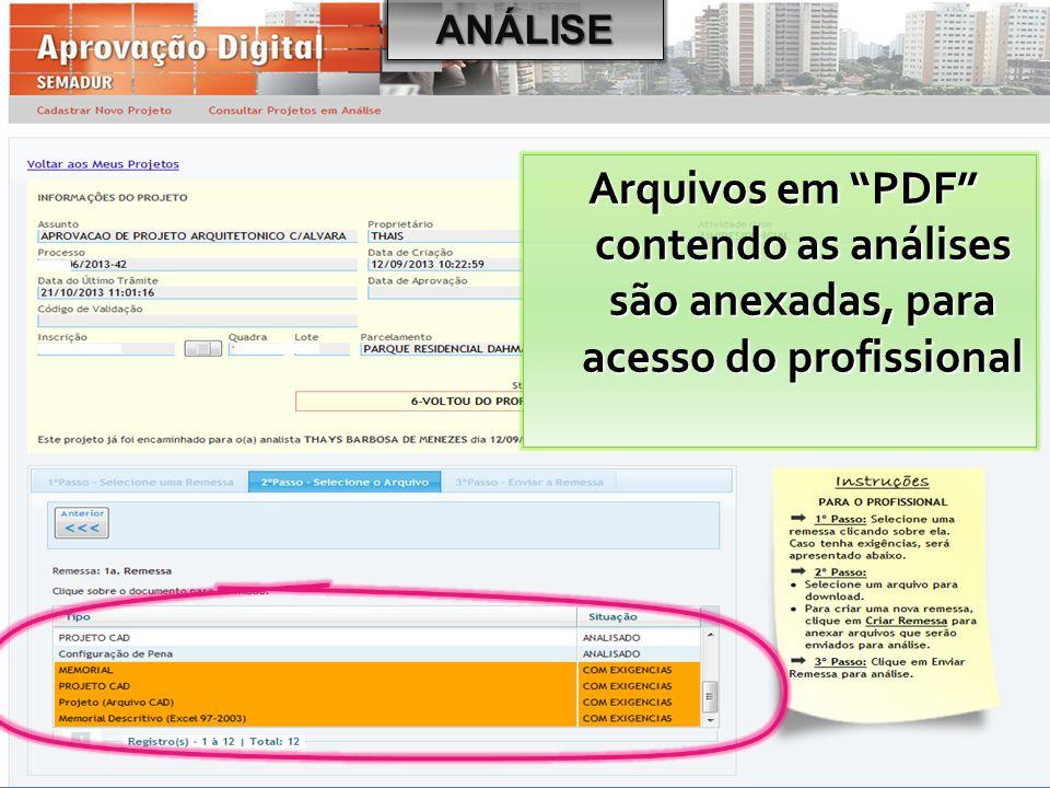 ANÁLISE Arquivos em PDF contendo as análises são anexadas, para acesso do profissional