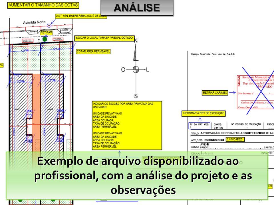 ANÁLISE Exemplo de arquivo disponibilizado ao profissional, com a análise do projeto e as observações.
