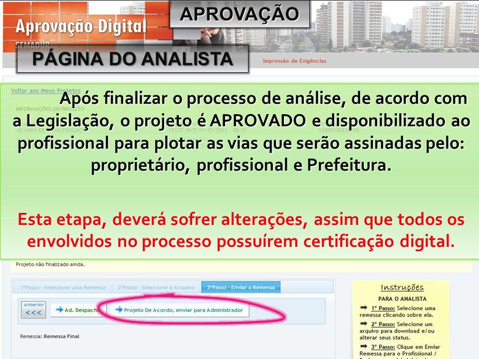 APROVAÇÃO PÁGINA DO ANALISTA.