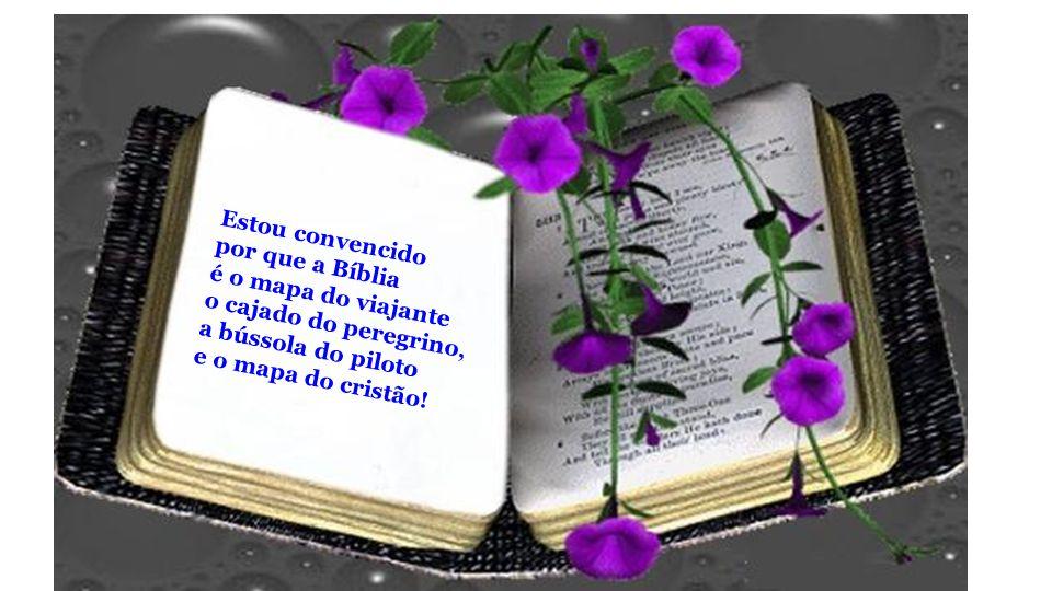 Estou convencido por que a Bíblia. é o mapa do viajante. o cajado do peregrino, a bússola do piloto.