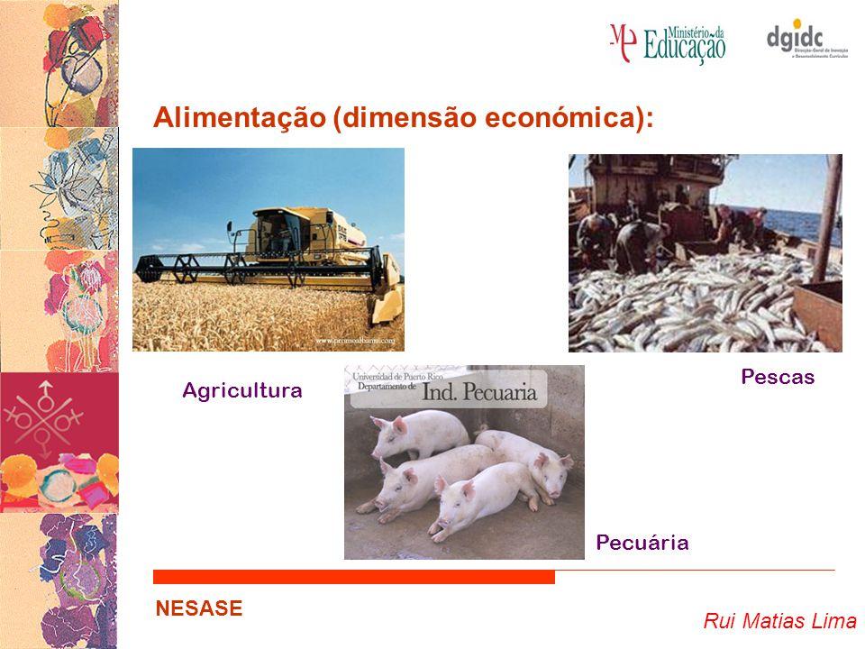 Alimentação (dimensão económica):