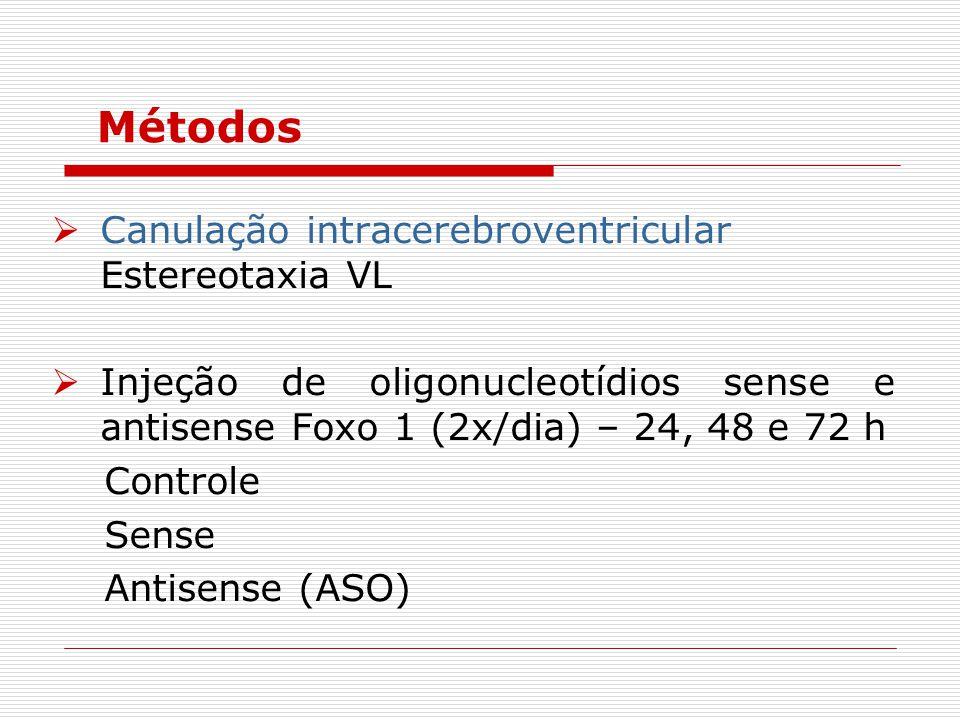 Métodos Canulação intracerebroventricular Estereotaxia VL