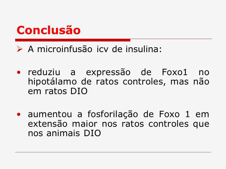 Conclusão A microinfusão icv de insulina:
