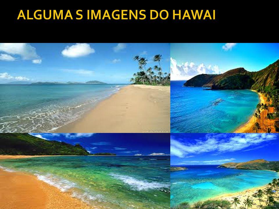 ALGUMA S IMAGENS DO HAWAI