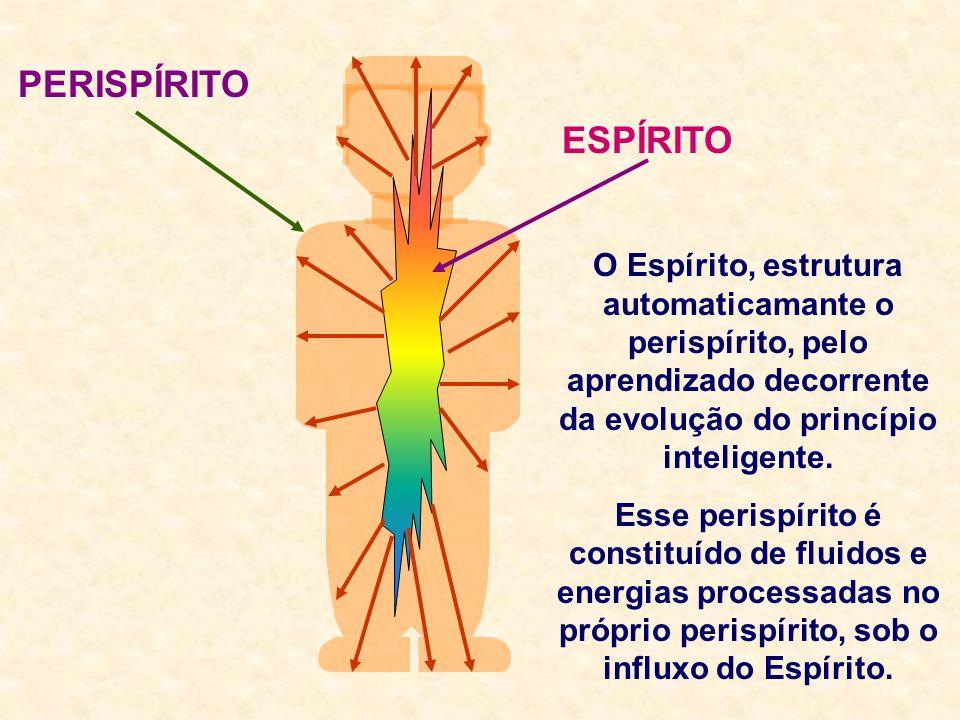 PERISPÍRITO ESPÍRITO. O Espírito, estrutura automaticamante o perispírito, pelo aprendizado decorrente da evolução do princípio inteligente.