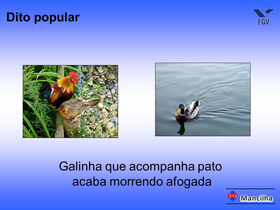 Galinha que acompanha pato acaba morrendo afogada