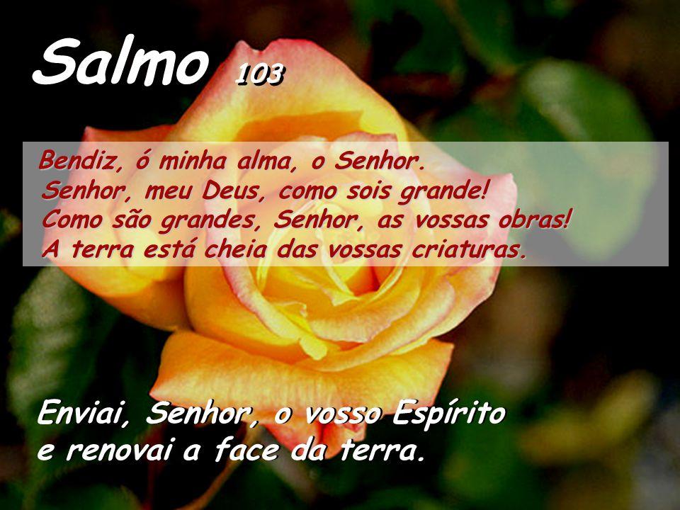 Salmo 103 Enviai, Senhor, o vosso Espírito e renovai a face da terra.