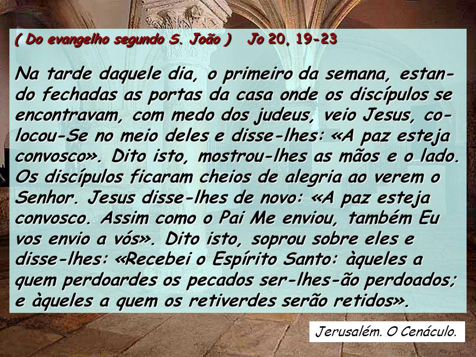 ( Do evangelho segundo S. João ) Jo 20, 19-23