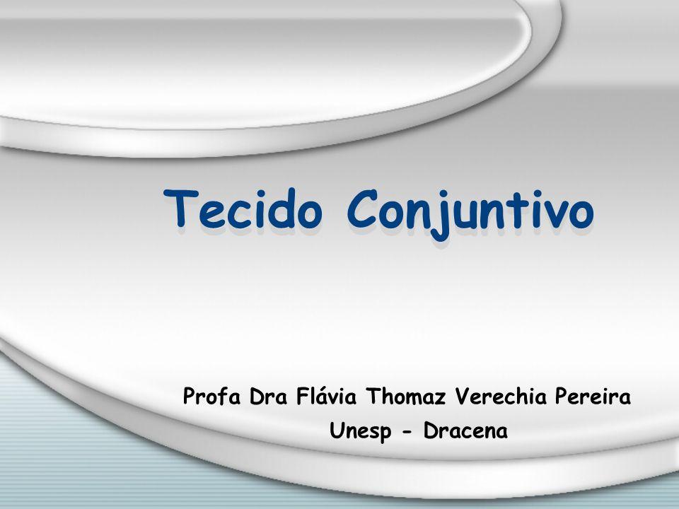 Profa Dra Flávia Thomaz Verechia Pereira