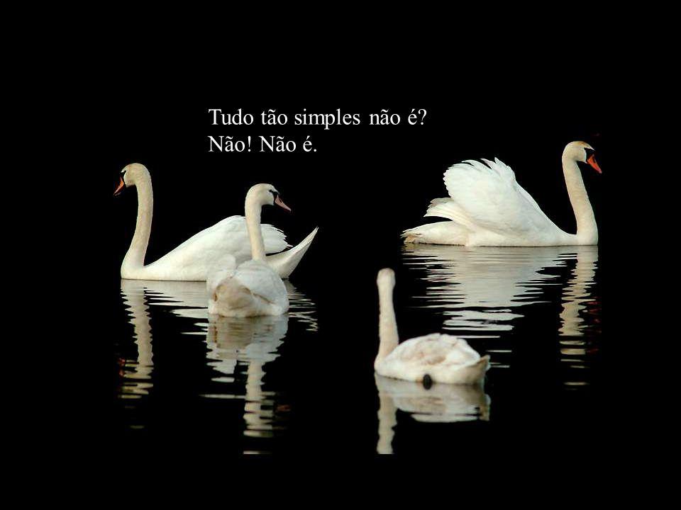 Tudo tão simples não é Não! Não é.
