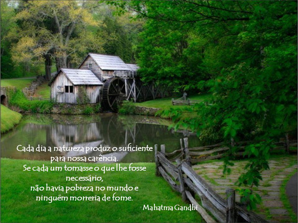 Cada dia a natureza produz o suficiente para nossa carência.