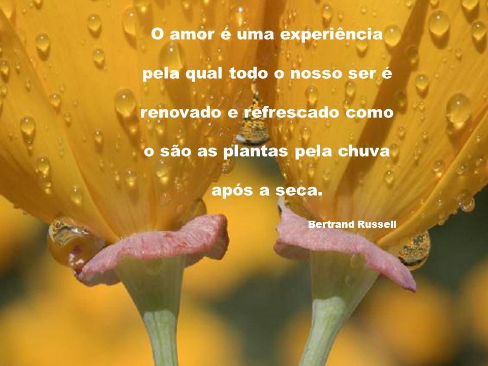 O amor é uma experiência pela qual todo o nosso ser é