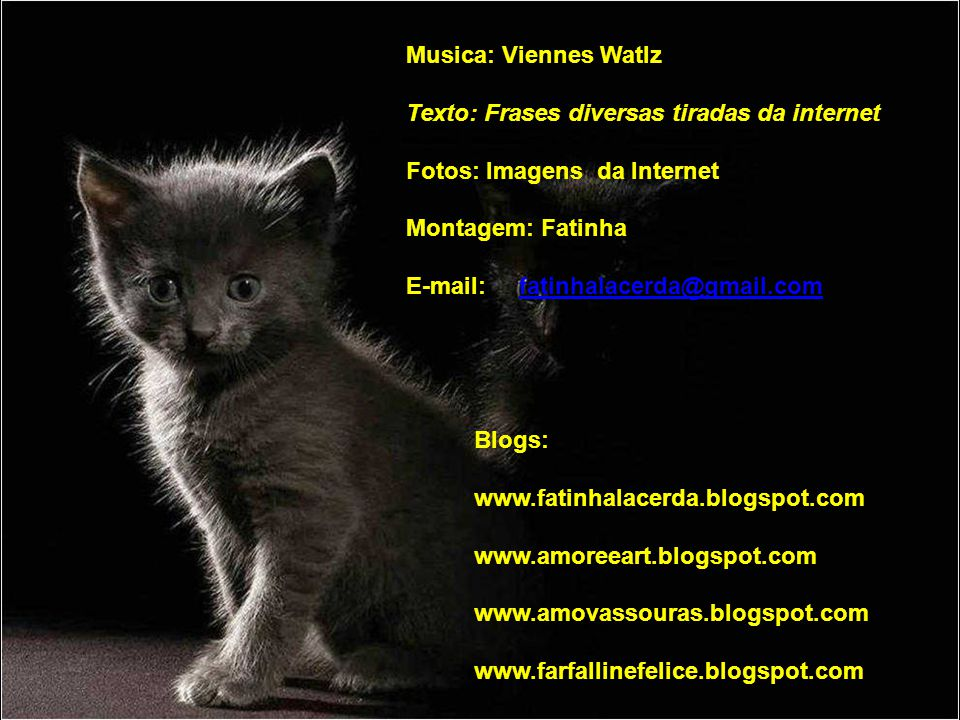 Musica: Viennes Watlz Texto: Frases diversas tiradas da internet. Fotos: Imagens da Internet. Montagem: Fatinha.