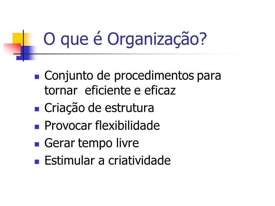 O que é Organização Conjunto de procedimentos para tornar eficiente e eficaz. Criação de estrutura.