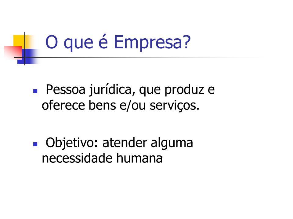 O que é Empresa. Pessoa jurídica, que produz e oferece bens e/ou serviços.