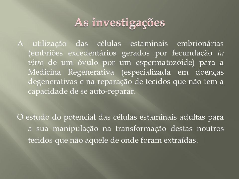 As investigações