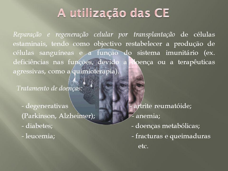 A utilização das CE